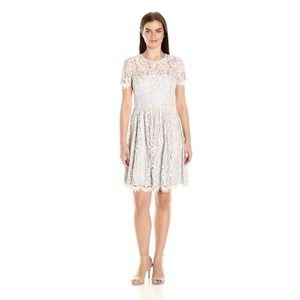 NWT Eliza J Lace Cap Sleeve Fit and Flare Dress